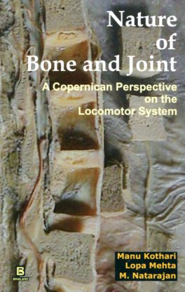 Nature of bone and joint